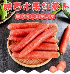 陕西大荔沙地水果胡萝卜带箱10斤生吃新鲜红心沙窝红萝卜包邮