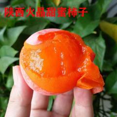 【陕西特产】陕西火晶甜蜜柿子 皮薄无核 果肉蜜甜