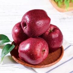 甘肃天水花牛苹果 新鲜当季水果 红蛇果新鲜包邮