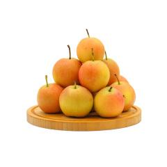 善食源南果梨中小果5斤装