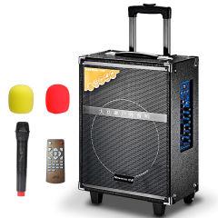 纽曼301D 户外广场舞音响 拉杆音箱 大功率便携移动式蓝牙插卡扩音器