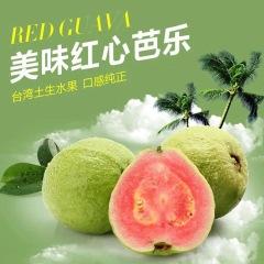 福建红心芭乐 酸甜爽口 5斤