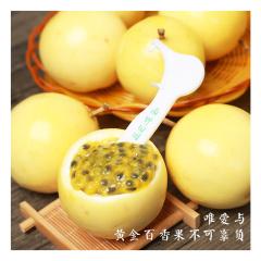 【新鲜水果】黄金百香果 5斤 (45-50个、单果45-55g)