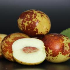 【新鲜水果】山东沾化冬枣 5斤装 (大果 25-30个/斤)  新鲜上市