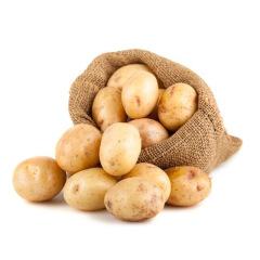 【新鲜蔬菜】山东荷兰土豆 小果40个左右 5斤装 (单果约40g)