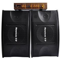 纽曼 专业家庭影院音箱功放KTV音响套装 卡拉音响会议卡包箱低音炮 BW360