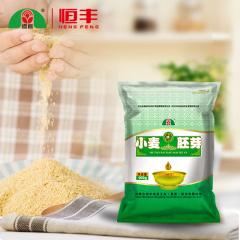 内蒙古河套小麦胚芽100g 即食高纤维粗粮 粉早餐食用胚芽粉