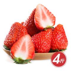 正宗丹东红颜99草莓秒杀组