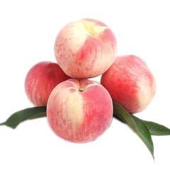 边走边淘 平谷水蜜桃 4斤 单果重200-250g 包邮