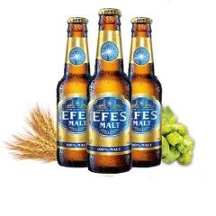 艾菲EFES 土耳其原装进口纯麦啤酒250ml*24瓶 整箱 褐色