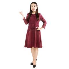 DS蕾丝袖A字版连衣裙